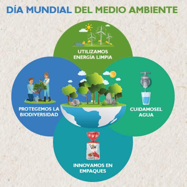 Hoy, en el Día Mundial del Medio Ambiente y siempre,  queremos celebrar a la naturaleza regresándole todo lo que nos brinda