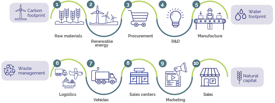 Our value chain