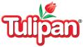 Tulipán America Central