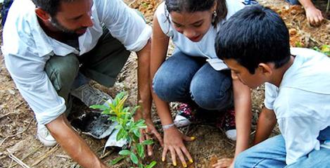 Grupo Bimbo Sustentabilidad